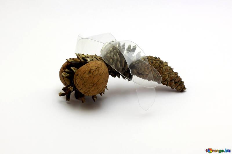 Children`s Dragonfly crafts №37155