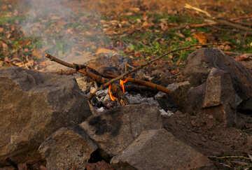Bonfire  №38603