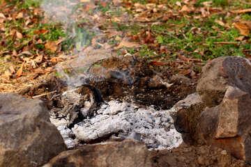 Coals in the fire №38607