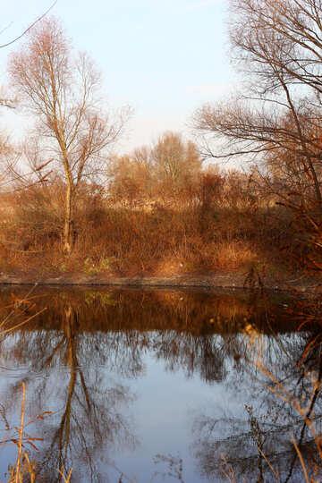Lago de otoño №38629