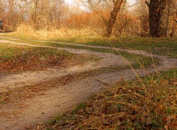 Dirt road in autumn №38632
