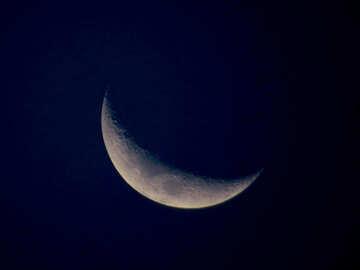Sickle moon №38710
