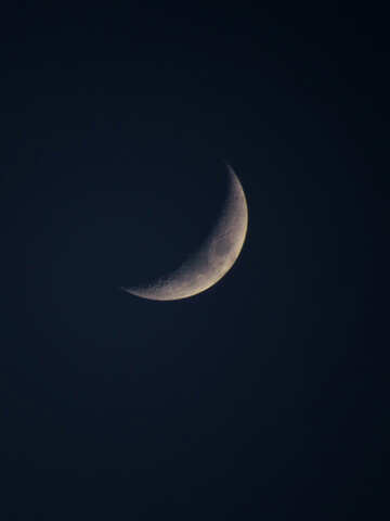Young moon №38711