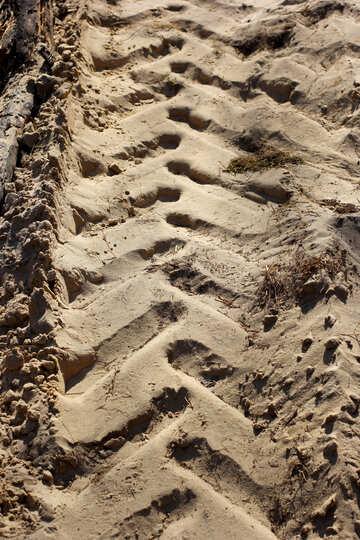 Trail Lauffläche Traktor №38512