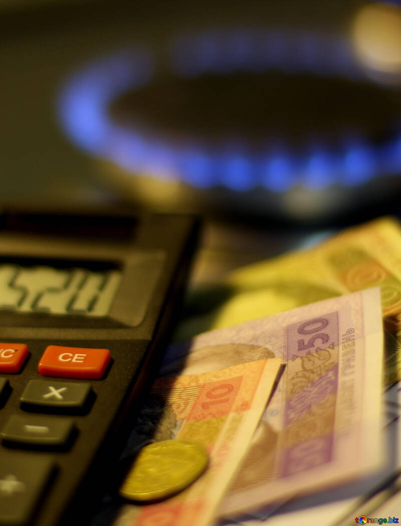 The price of domestic gas №38459