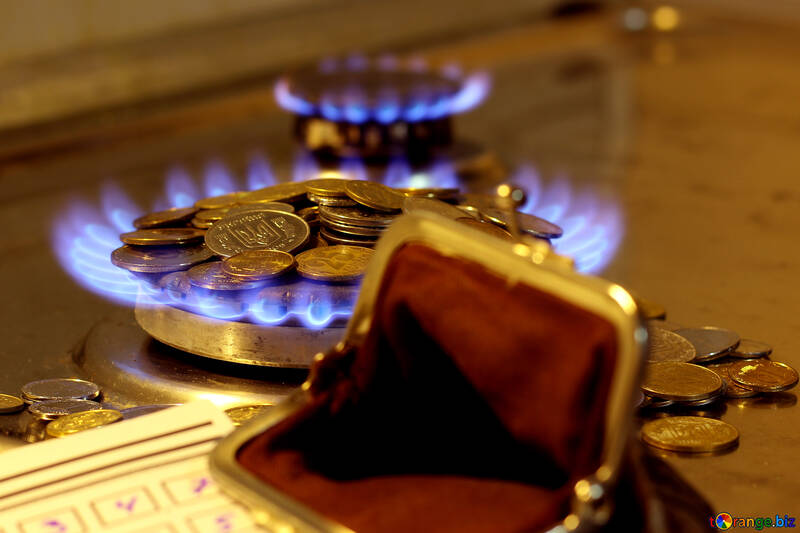 An empty wallet after payment of utility bills №38439