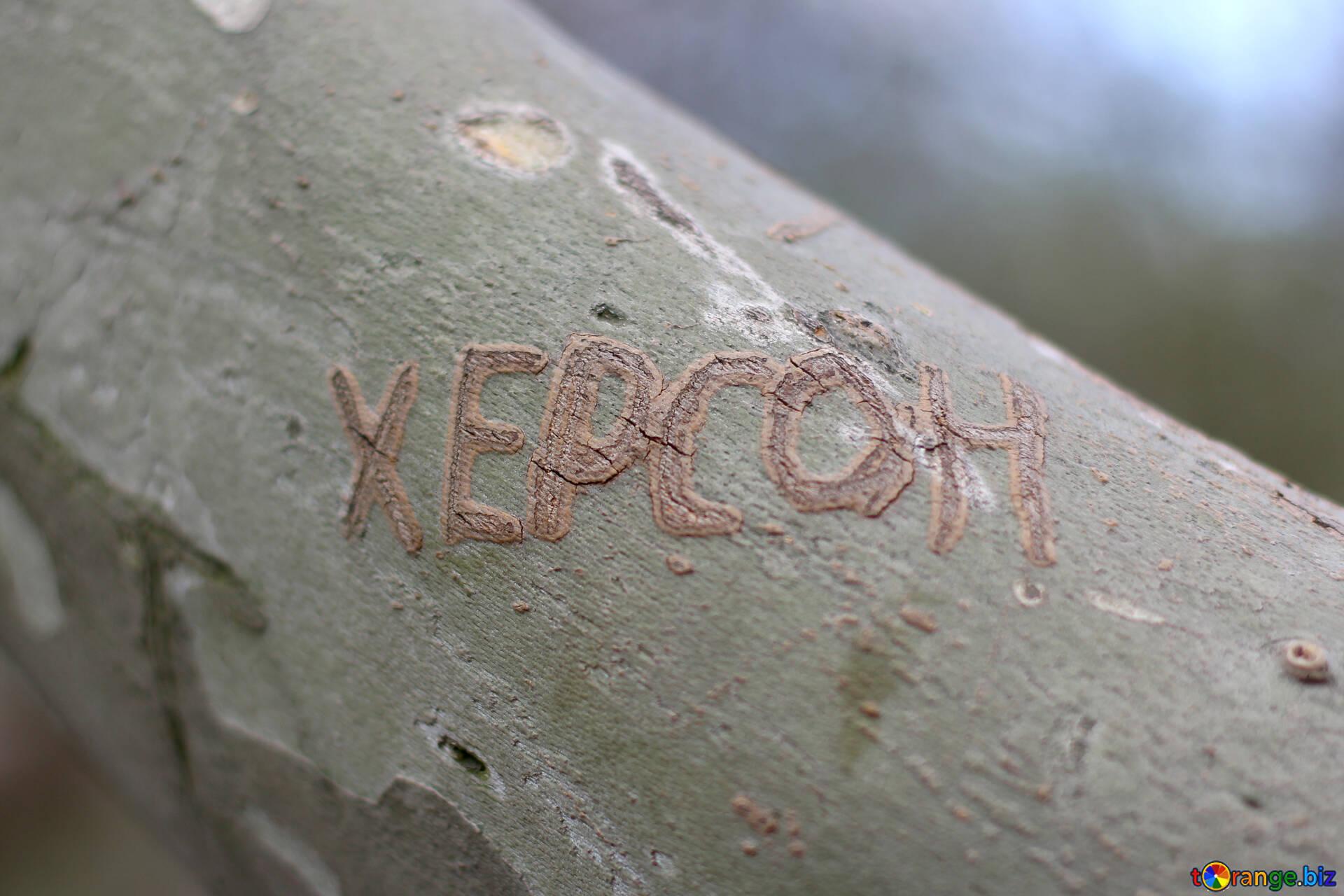 Для хендлера, надпись на дереве в картинках