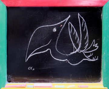 Pterodactyl drawing chalk №39206
