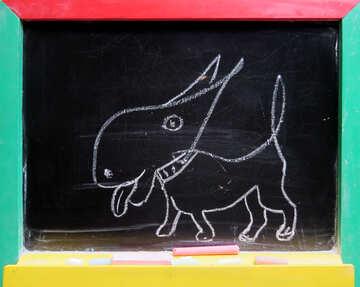 Собачка рисунок мелом №39203