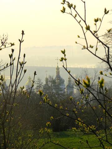 Spring dawn №39165