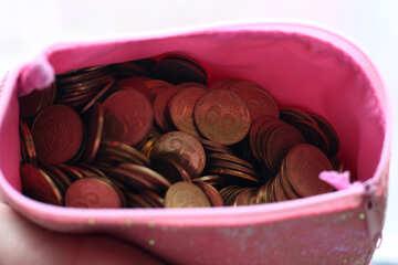 The money in the children`s purse №39022