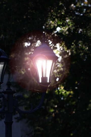 Lantern №39645
