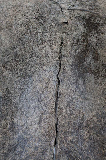 The texture of the stone with crack №39369