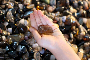 Children and stones №39324