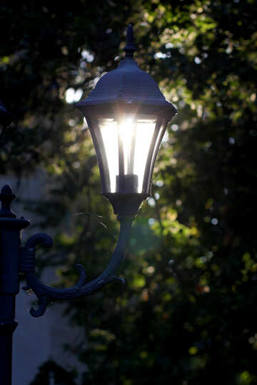 The old street lamp №39646
