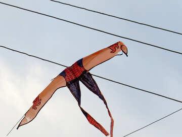 Kite got stuck in the wires №39245