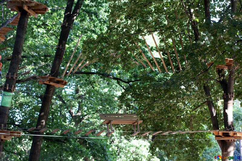Rope bridge №39631