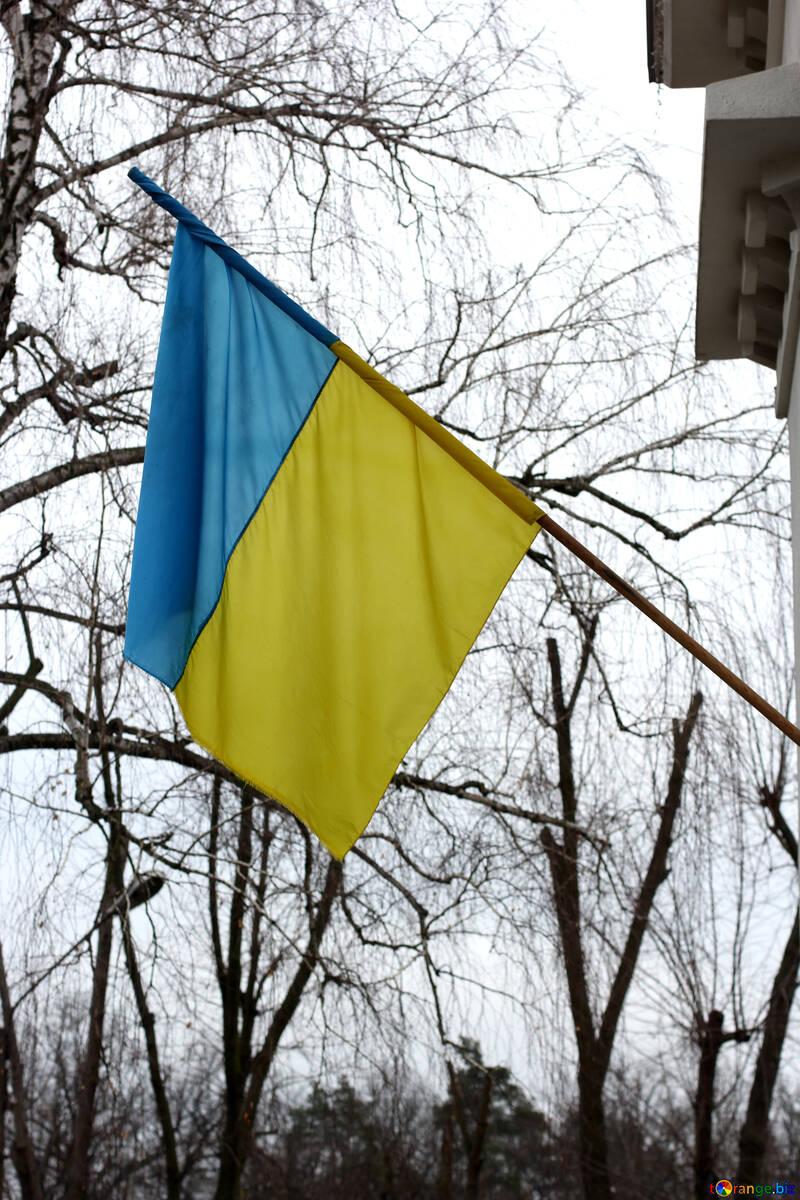 The flag of Ukraine on he House №39079
