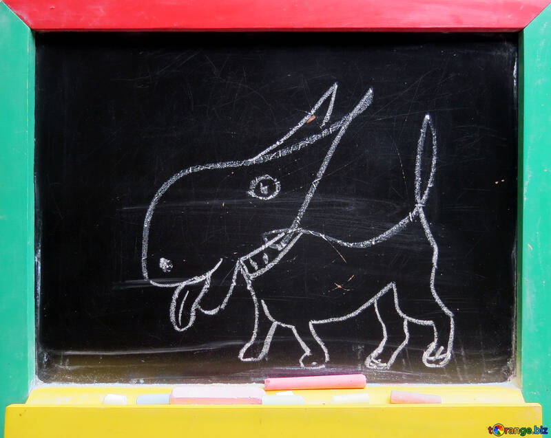 Dog drawing chalk №39203