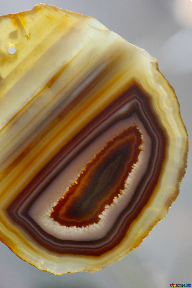 Agate slice №39491