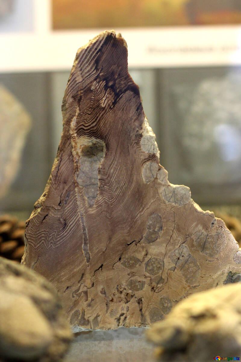 Cut stone №39379