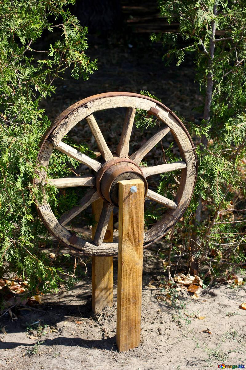 Die Idee mit dem Rad-Karren №39613