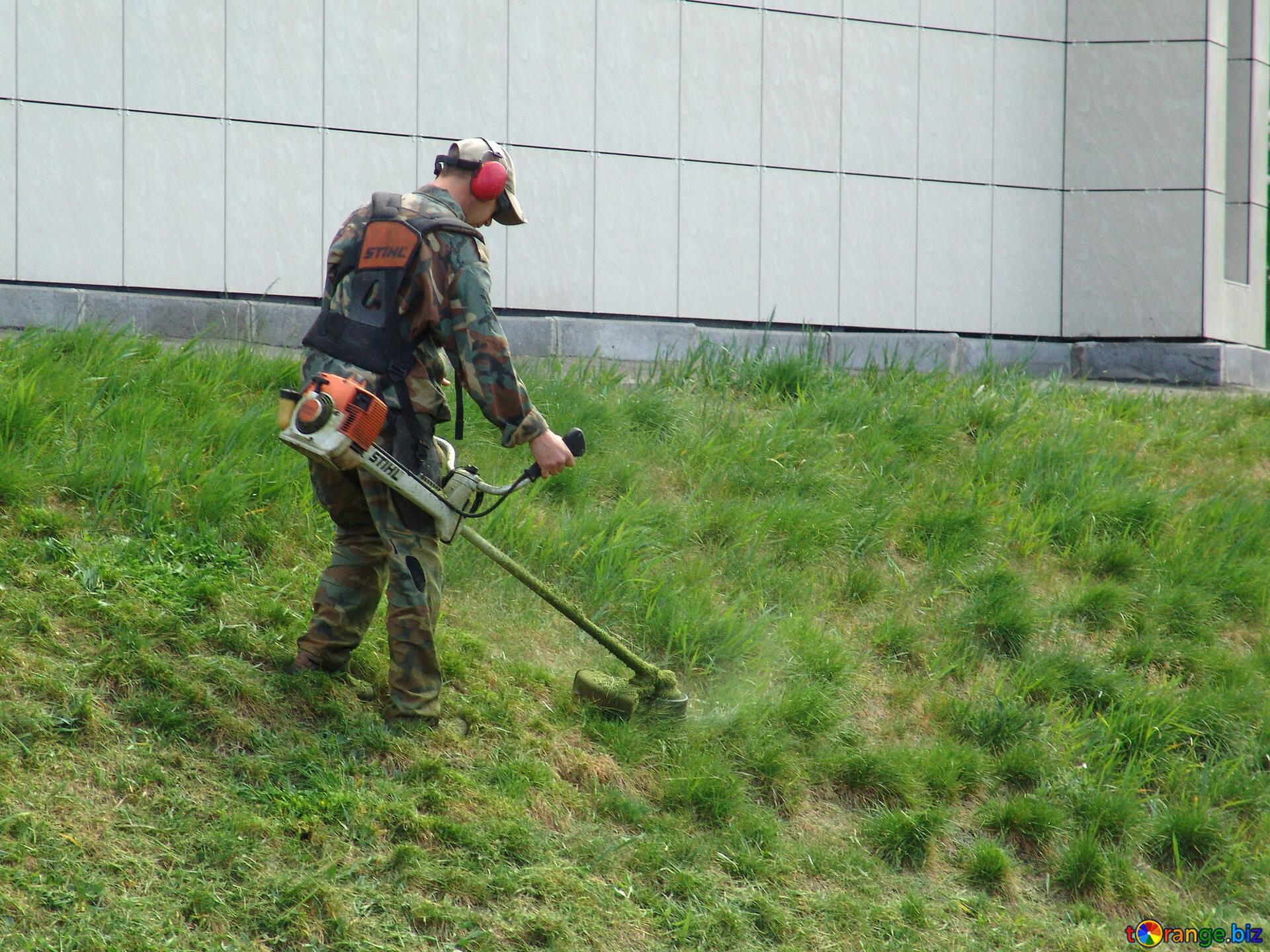 Своими, газонокосильщик прикольные картинки