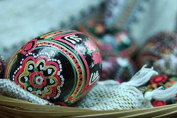 Patterns of chicken egg №4289