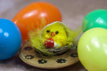 Chicken surrounded by Easter eggs №4331