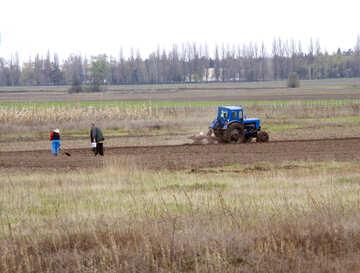 Pflanzen der Kartoffeln. Leute mit einer Schaufel. Traktorpflügen. №4870