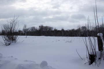 Fields in the winter №4007