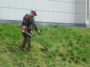 Lawn mowing. Natural grass. №4125