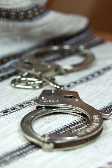 Задержание №4486