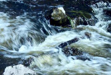 Veloce flusso №4758