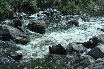 Rolls  stream №4746