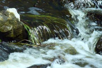 La corriente del agua №4757