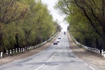 La strada sulla collina №4871