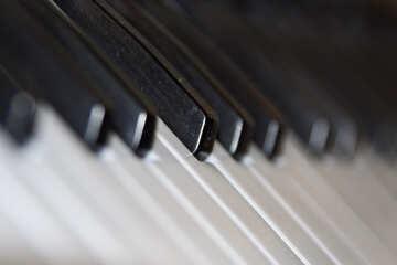 The piano №4466