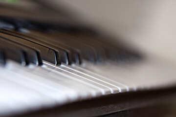 Piano №4469
