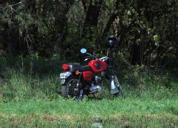 Motociclo №4848