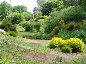 Landscape design for complex plot №4115
