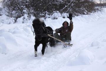 Катание на пони зимой на санках №4005