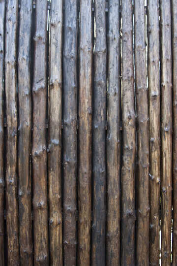 Texture: A fence made of logs №4573