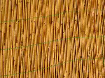 The texture of straw, reeds. №4113