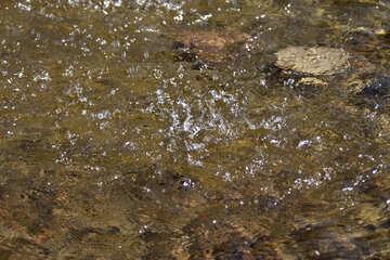 El agua №4199
