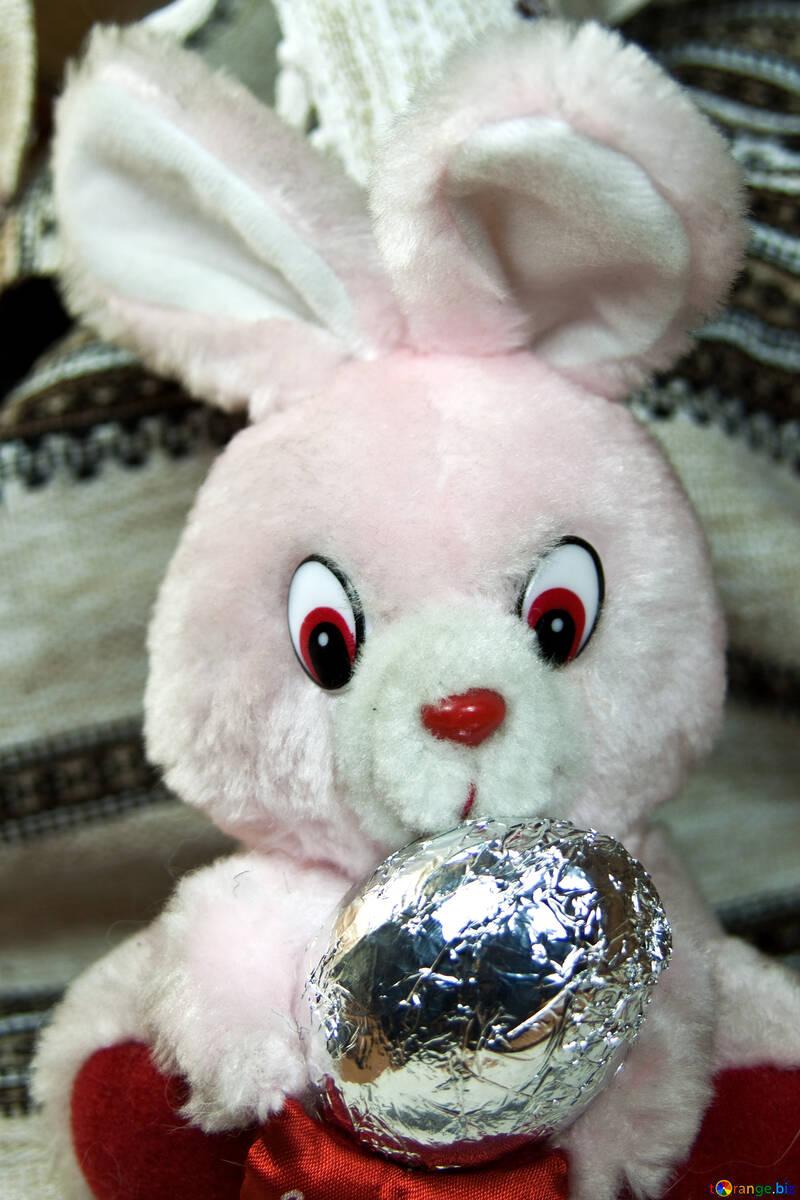 Rabbit with chocolate egg №4321