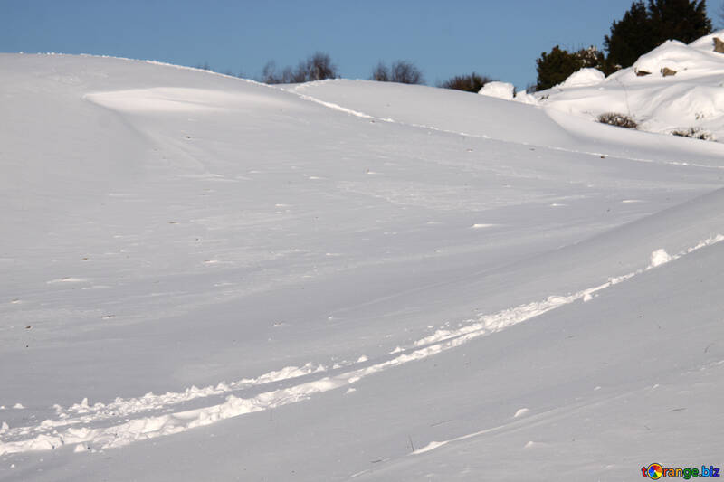 Footprints in the snow №4248