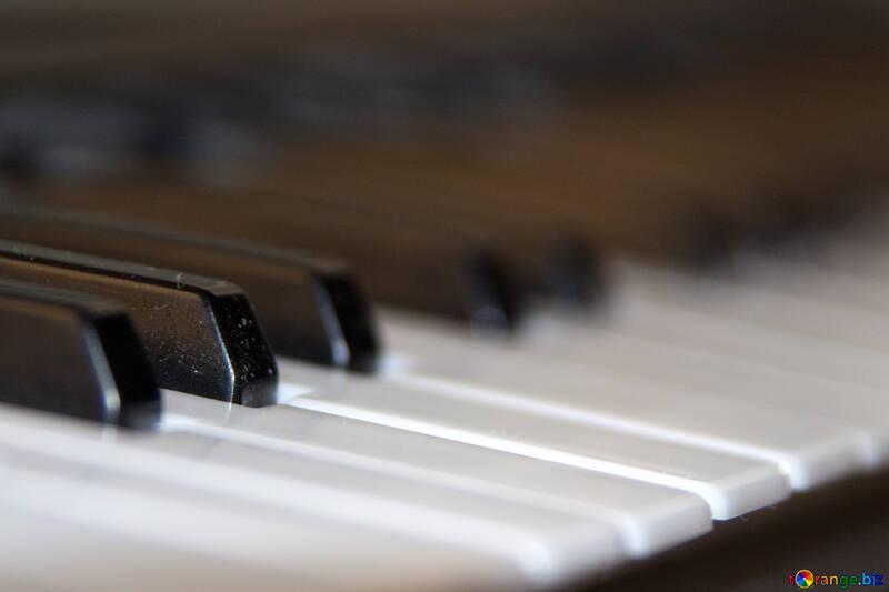 Piano Keyboard №4468