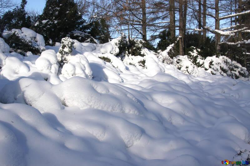 Snowdrifts №4242