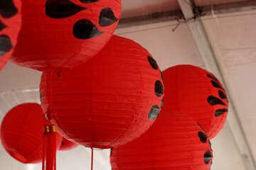 Chinese paper lanterns №40907